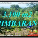 TANAH di JIMBARAN BALI DIJUAL 3,100 m2 View Laut dan Jalan Tol